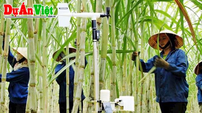 AI và IoT: Hàng loạt doanh nghiệp lớn đang ứng dụng trong phát triển nông nghiệp ở Việt Nam