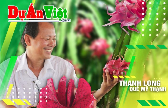 """Thanh long thuận tự nhiên – Phát triển mô hình """"mới"""" kiểu """"cũ"""" để người dân Việt thưởng thức trái cây ngọt lành"""