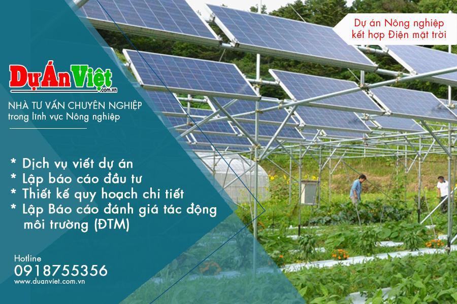Dự án nông nghiệp ứng dụng công nghệ cao