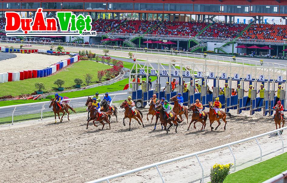 Dự án Trung tâm đua ngựa thể thao vui chơi giải trí Cần Thơ