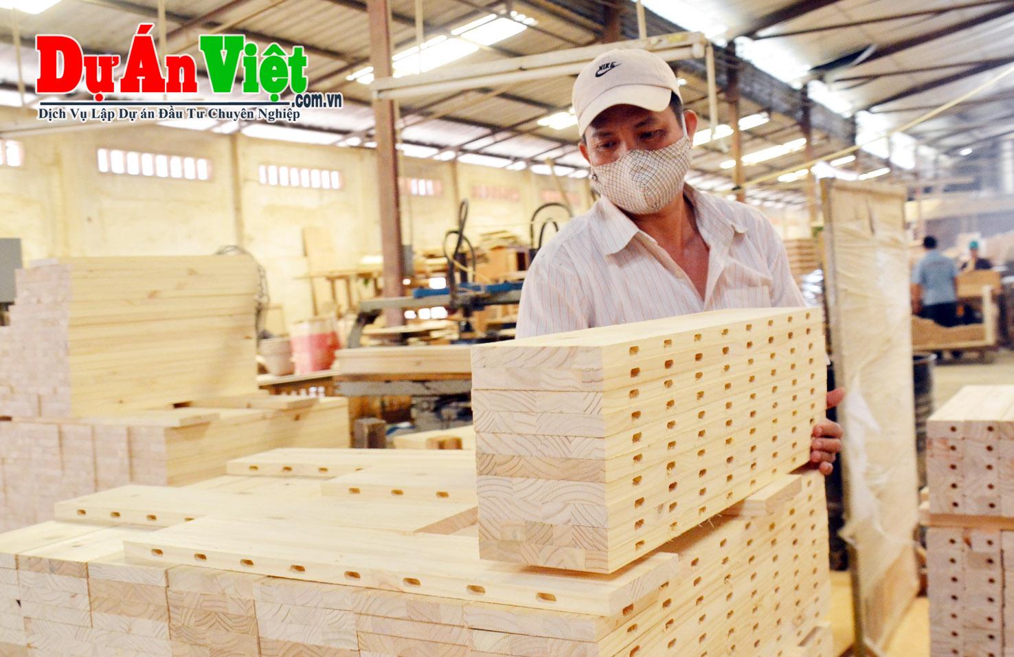 Lập dự án đầu tư nhà máy cửa xẻ gỗ cao su Đồng Tâm H.A