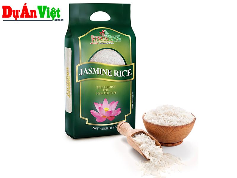 Thuyết minh Dự án Xây dựng Nhà máy Gạo chất lượng cao - Lotus Rice