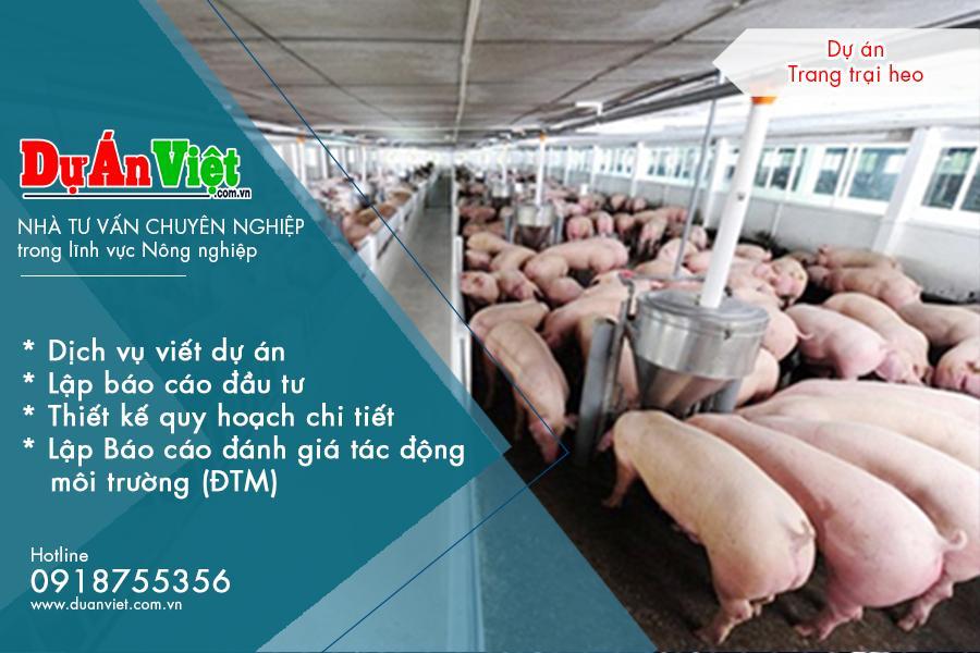 Dự án trang trại nuôi lợn nái sinh sản và thương phẩm