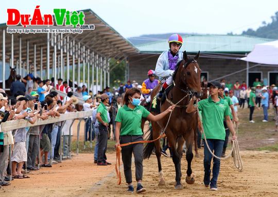 Dự án trường đua ngựa và khu nghỉ dưỡng phức hợp Cần Thơ