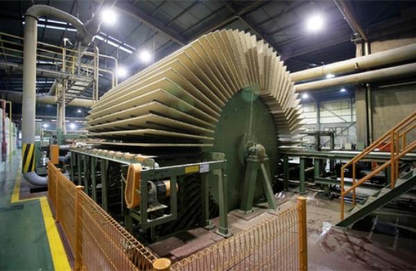 Dự án nhà máy chế biến gỗ