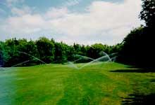 Dự án sân golf
