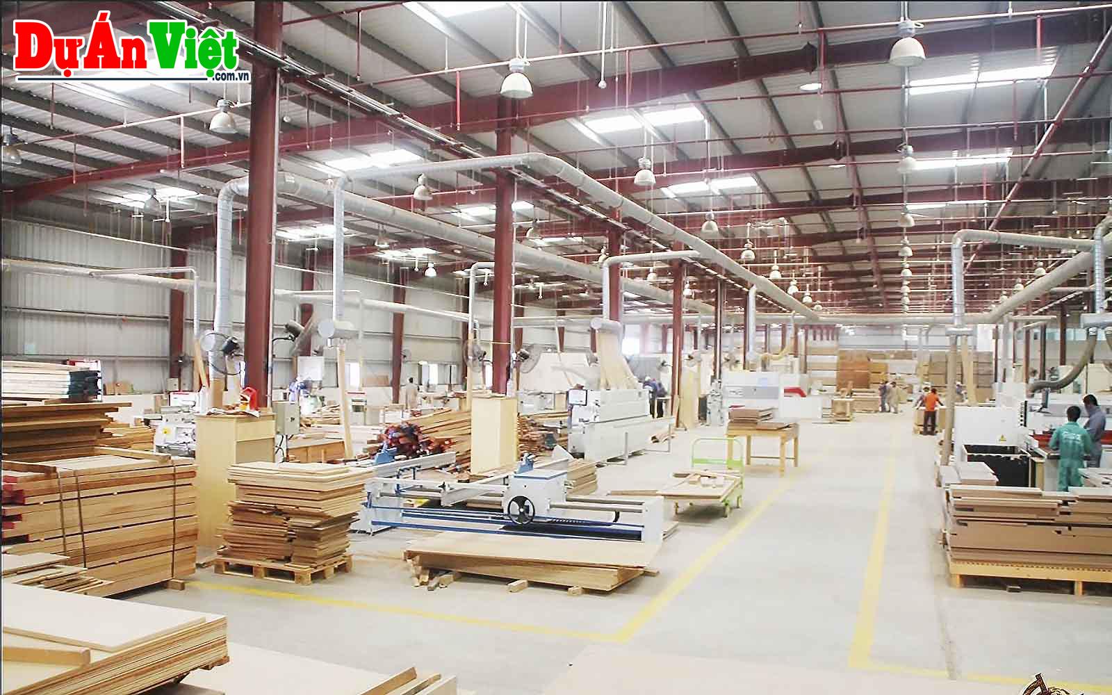 Dự án Nhà máy sản xuất gỗ tại Tây Nguyên