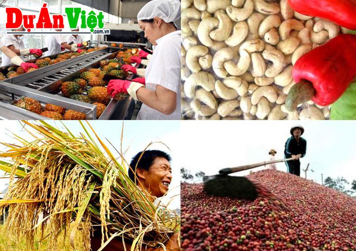 Thuyết minh Dự án Nhà máy sản xuất và chế biến nông lâm sản tại Hà Nội