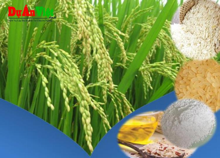 Dự án Đầu tư Tổ hợp Sản xuất và Chế biến Lương thực sau thu hoạch Mekong Vina