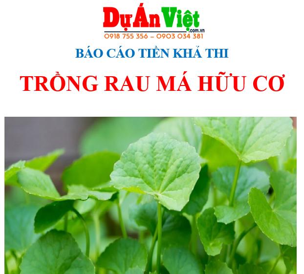 Báo cáo tiền khả thi dự án Trồng rau má hữu cơ tại Thanh Hóa