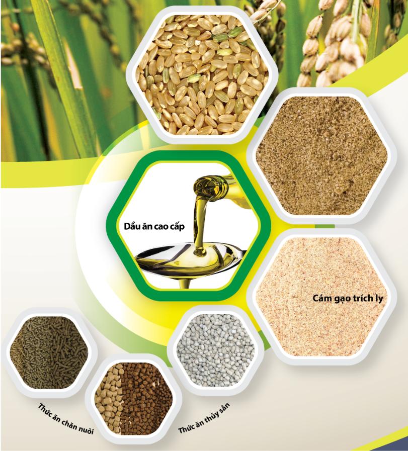 Dự án đầu tư chuỗi giá trị gia tăng sản phẩm từ lúa gạo