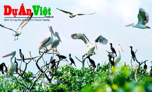 Dự án Khu du lịch sinh thái Vườn Chim Bạc Liêu