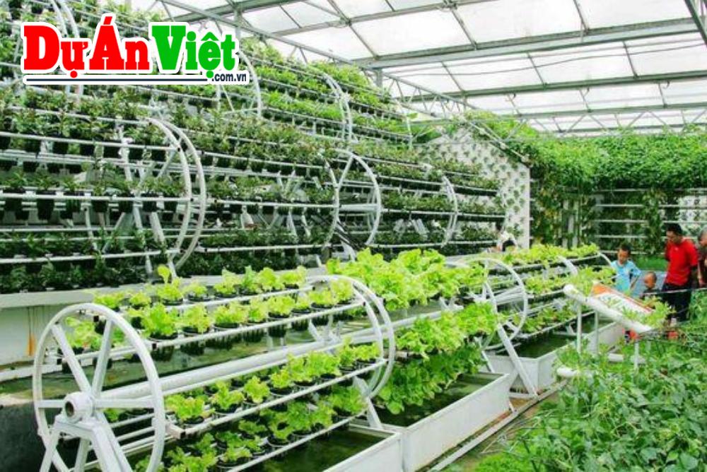 Xây dựng Khu Nông Nghiệp Công Nghệ Cao Kết Hợp Du Lịch Locamex tỉnh Kiên Giang