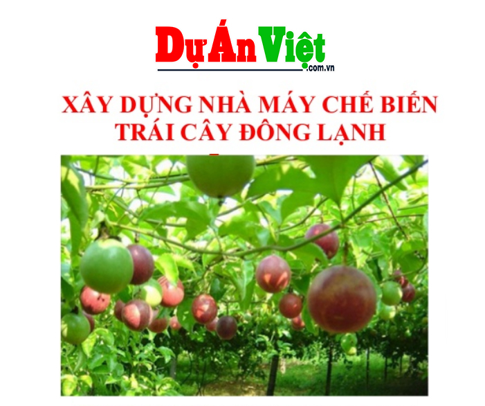 Xây dựng nhà máy chế biến trái cây đông lạnh tỉnh Đăk Nông