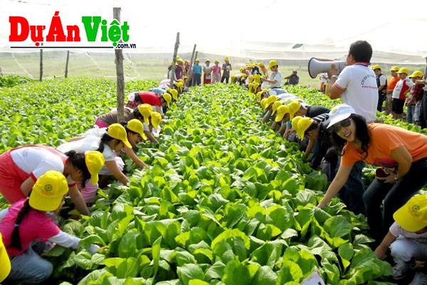 Nông trại giáo dục kết hợp du lịch và sinh thái xanh Hà Nội