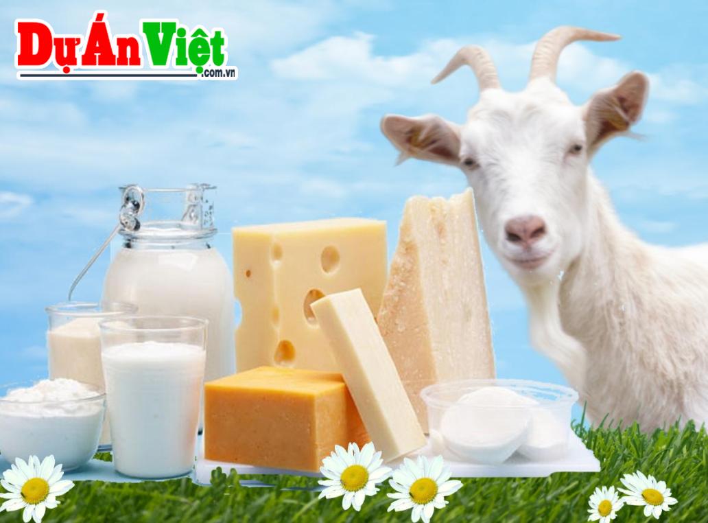 Dự án Xây dựng nhà máy chế biến sữa dê và các sản phẩm từ sữa dê Măng Đen tỉnh Kon Tum