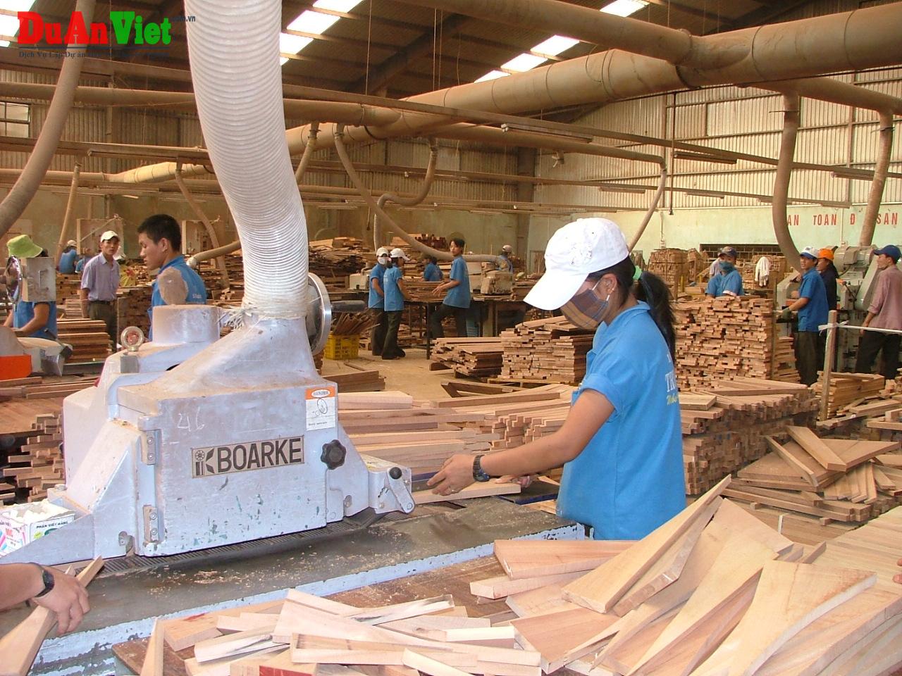 Dự án cưa xe sấy gỗ, sản xuất ván ghép & sản xuất viên nén gỗ