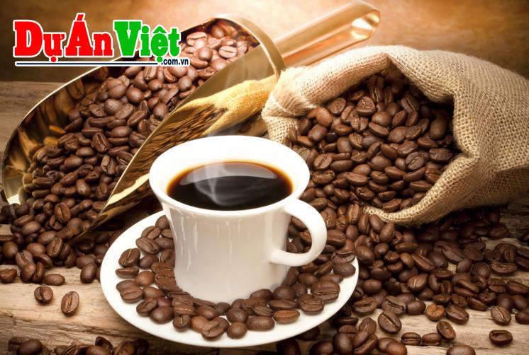 Khái toán Dự án Nhà máy Chế biến Cà phê rang xay tỉnh Gia Lai