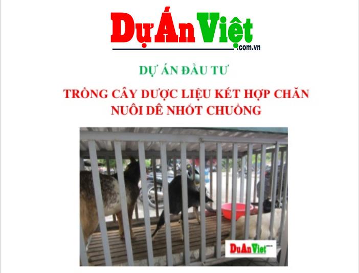Dự án Đầu tư Trồng cây Dược liệu Kết hợp Chăn Nuôi Dê nhốt chuồng Điện Biên