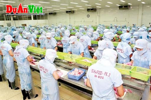 Dự án xây dựng cơ sở sản xuất kinh doanh nông, lâm sản