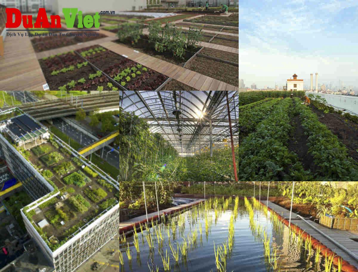 Dự án Nông trại Giáo dục Phú Gia Trang