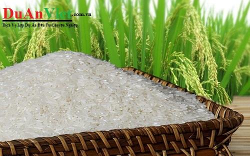 Dự án  Trung tâm nghiên cứu ứng dụng công nghệ cao trong chọn tạo và sản xuất giống lúa cao sản