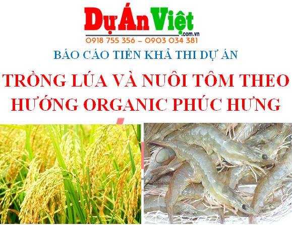 Thuyết minh dự án đầu tư Trồng lúa và nuôi tôm theo hướng Organic Phúc Hưng