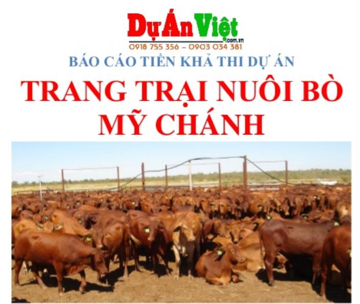 Thuyết minh dự án đầu tư Trang trại nuôi bò Mỹ Chánh tỉnh Trà Vinh