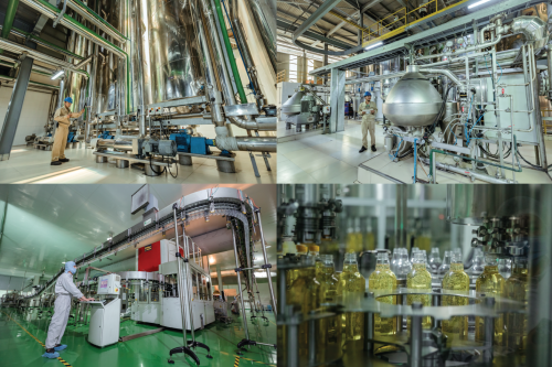 Dự án nhà máy sản xuất tinh dầu cám gạo