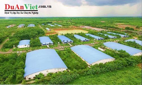 Dự án trồng cây ngắn ngày, cây ăn quả kết hợp chăn nuôi Gio Linh